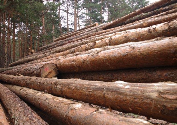La madera casas de madera prefabricadas - Propiedades de la madera ...