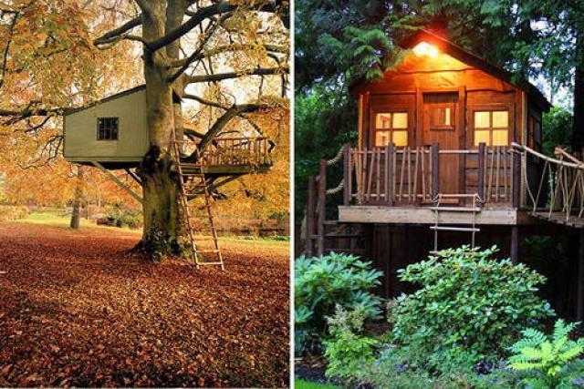 5 casas de madera sobre los arboles casas de madera - Seguros casas de madera ...