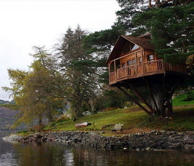 casa de madera arbol