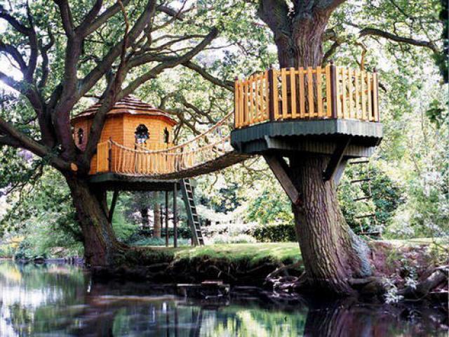 casa de madera arboles