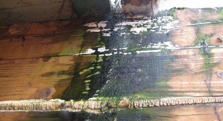 El contenido de humedad en la madera casas de madera prefabricadas - Humedad en casa ...
